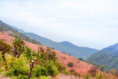 Berglandschap door Oaxaca in Mexico royalty-vrije stock afbeeldingen