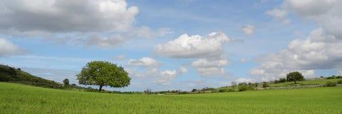 Berglandschap - Groene aarde - panorama Royalty-vrije Stock Foto's