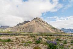 Berglandschap in IJsland Stock Afbeeldingen