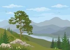 Berglandschap met boom Stock Afbeelding