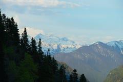 Berglandschap met boshellingen en hoge snow-capped pieken van de bergen van de Kaukasus vlak vóór zonsondergang Royalty-vrije Stock Afbeelding
