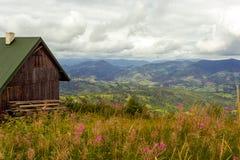 Berglandschap met hooi, bloemen en houten loods vooraan royalty-vrije stock afbeeldingen