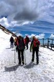 Berglandschap met leurders Stock Foto