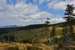 Berglandschap met Nette Bomen en lichtstralen, Tsjechische Republiek, Europa Royalty-vrije Stock Foto