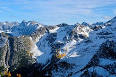 Berglandschap met sneeuw en gele bomen royalty-vrije stock fotografie
