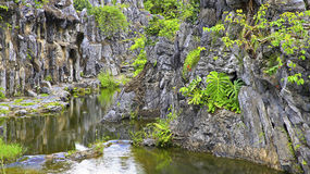 Berglandschap met stroom Stock Foto's