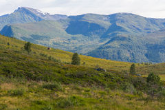Berglandschap, Noorwegen Royalty-vrije Stock Foto