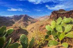 Berglandschap van het eiland van Gran Canaria Stock Foto's