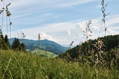 Berglandschap van Weinig Fatra met bossen, heuvels en gras Royalty-vrije Stock Afbeeldingen