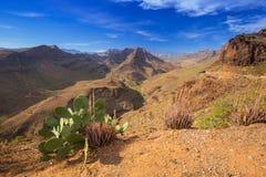 Berglandskap av den Gran Canaria ön Arkivfoto