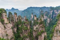 Berglandskap av den Zhangjiajie nationalparken Royaltyfri Foto