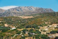 Berglandskap av Kretaön, Grekland Fotografering för Bildbyråer