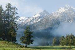 Berglandskap. Bergområde Arhiz. Sikt från brogläntan. Theberda reserv. Karachay-Cherkessia. Ryssland Royaltyfria Foton