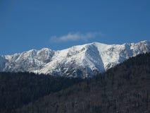Berglandskap - Bucegi berg Arkivfoton