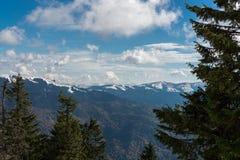 Berglandskap Carpathians Arkivfoton