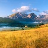 Berglandskap. Durmitor nationalpark royaltyfri bild