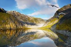 Berglandskap, glaciär sjö arkivfoto