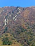 Berglandskap i Almaty, stor sjö arkivfoton