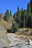 Berglandskap i Almaty, stor sjö arkivfoto