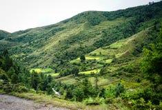 Berglandskap i Bhutan Arkivfoto