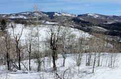 Berglandskap i Colorado Rocky Mountains royaltyfri bild