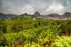 Berglandskap i en molnig dag Arkivfoton