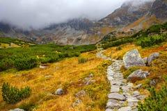 Berglandskap i en molnig dag Royaltyfri Fotografi
