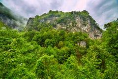 Berglandskap i en regnig dag Royaltyfri Fotografi
