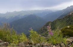 Berglandskap i Kaukasuset Royaltyfri Bild