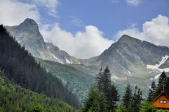 Berglandskap i sommar Royaltyfria Foton