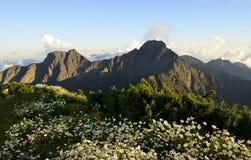 Berglandskap i sommar royaltyfri fotografi