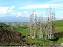 Berglandskap i tajikistan Royaltyfri Fotografi
