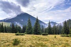 Berglandskap i trevligt soligt väder Sikt från grönt gräs- fotografering för bildbyråer