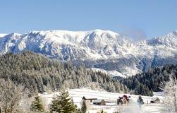 Berglandskap i vinter med snöig träd i solig dag Arkivfoton