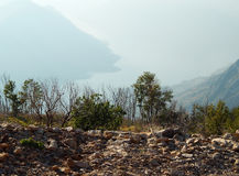 Berglandskap med buskar och havet Royaltyfri Foto
