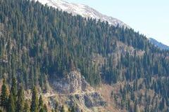 Berglandskap med den färgrika skogen och höga snö-korkade maxima av den härliga fantastiska dagen för Kaukasus berg Arkivbild