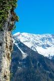 Berglandskap med den färgrika skogen och höga snö-korkade maxima av den härliga fantastiska dagen för Kaukasus berg Arkivfoton