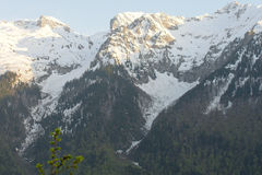 Berglandskap med den färgrika skogen och höga snö-korkade maxima av den härliga fantastiska dagen för Kaukasus berg Royaltyfria Foton