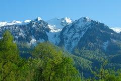 Berglandskap med den färgrika skogen och höga snö-korkade maxima av den härliga fantastiska dagen för Kaukasus berg Arkivfoto