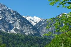 Berglandskap med den färgrika skogen och höga snö-korkade maxima av den härliga fantastiska dagen för Kaukasus berg Royaltyfri Fotografi