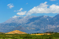 Berglandskap med den olivgröna kolonin, Kreta Royaltyfri Foto