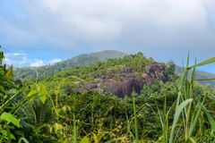 Berglandskap med djungler i Seychellerna arkivbilder