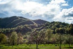Berglandskap med grönt gräs, kullar och träd, molnig himmel royaltyfri bild