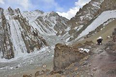 Berglandskap med hästar från Leh royaltyfri foto