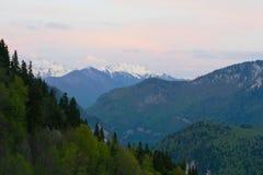 Berglandskap med skoglutningar och höga snö-korkade maxima av de Kaukasus bergen precis för solnedgång Arkivfoto