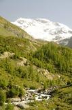 Berglandskap med strömmen Royaltyfri Fotografi