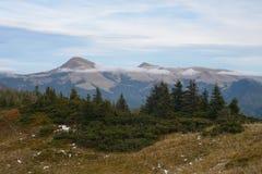 Berglandskap med träd Arkivbilder
