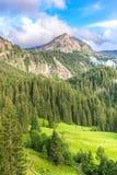 Berglandskap nära Gstaad, Schweiz royaltyfri bild