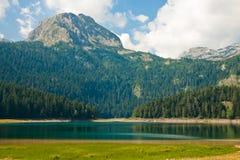 Berglandskap, nationalpark Durmitor, Montenegro Arkivbild