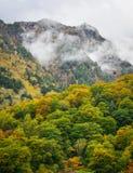 Berglandskap på hösten i Japan Royaltyfri Bild